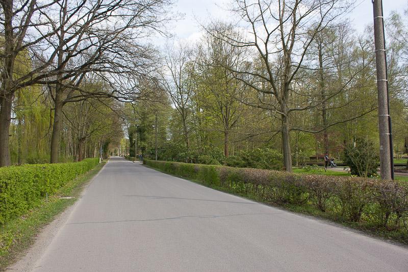 Strasse nach Lehde von Luebbenau aus.
