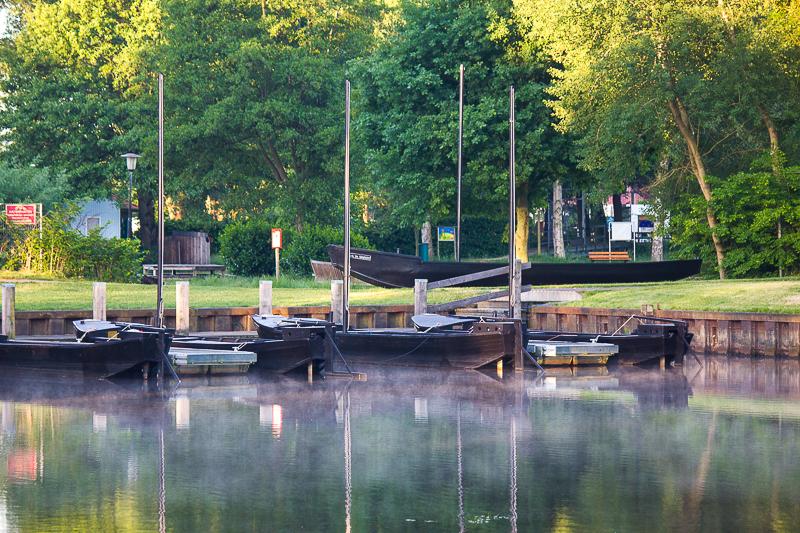 Morgen am Campingplatz Hammestrand Worpswede.