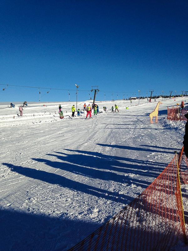 Skifahren im Skiareal Novako Bozi dar.