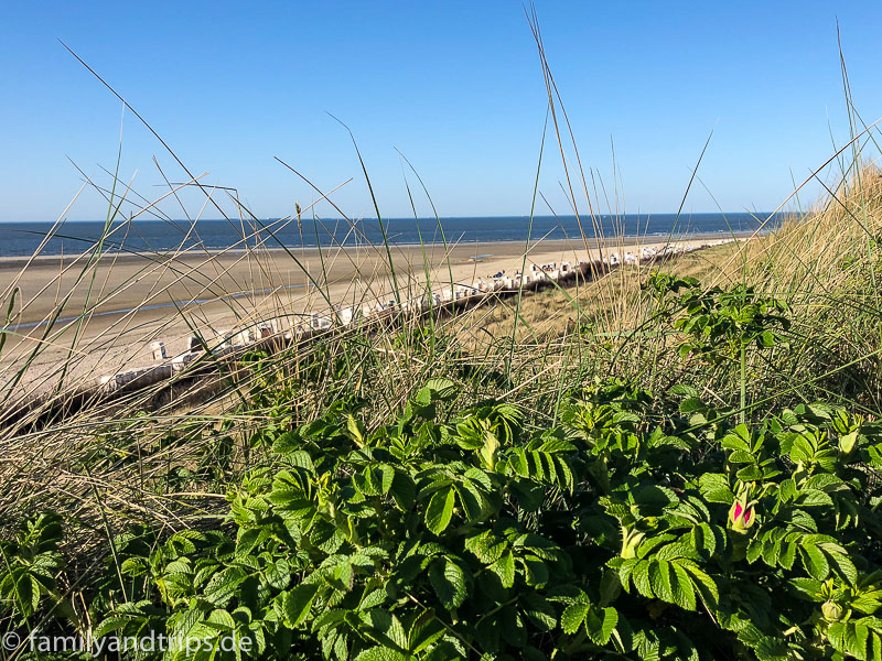 Strand mit Strandkörben Spiekeroog.