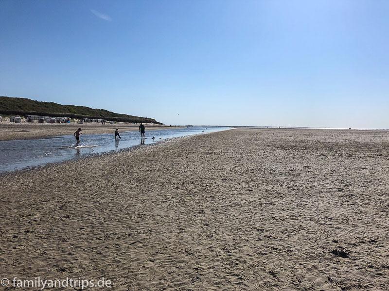 Kleine Wasserpriele am Strand von Spiekeroog.